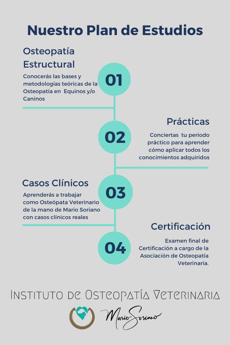 infografía formación instituto osteopatía veterinaria mario soriano