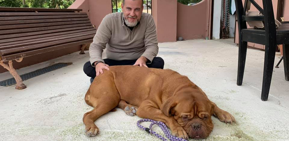 Mario Soriano tratamiento osteopatia instituto veterinario